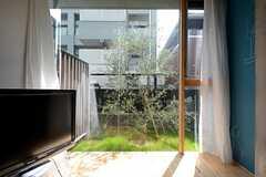 窓の外にはオリーブの木が植えられています。(2014-10-10,専有部,ROOM,1F)