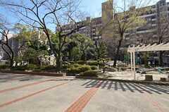 マンションの敷地内には、緑わんさかの公園があります。(2012-03-27,共用部,OTHER,1F)