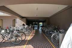 マンションの自転車置き場の様子。(2012-03-27,共用部,GARAGE,1F)
