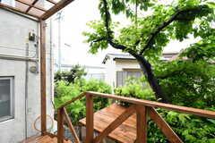 テラスの隣には桜の木。春にはお花見が楽しめます。(2018-05-23,共用部,OTHER,1F)
