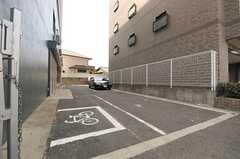 自転車置き場と駐車場の様子。(2014-03-19,共用部,GARAGE,1F)