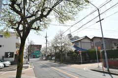 シェアハウス前の道路。(2017-04-05,共用部,ENVIRONMENT,1F)