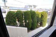 窓の外は玄関前のアプローチ。(101号室)(2013-02-25,専有部,ROOM,1F)