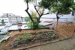 部屋から見た庭の様子。(102号室)(2011-06-11,専有部,ROOM,1F)