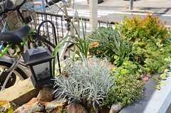 玄関前の駐車場付近には花壇が設けられています。(2015-04-21,共用部,OTHER,1F)