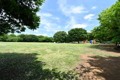徒歩2分の青葉の森公園の様子。とても広く、BBQ場や野球場、文化ホールなども備わっています。(2019-06-03,共用部,ENVIRONMENT,1F)