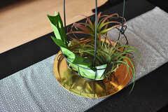 テーブルの上には観葉植物も。(2020-10-27,共用部,LIVINGROOM,1F)