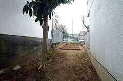 料理部専用の菜園スペース2。(2015-03-20,共用部,OTHER,1F)