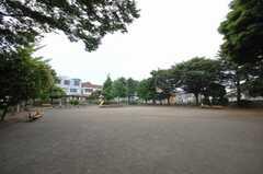 シェアハウスの目の前には公園がある。(2008-06-17,共用部,ENVIRONMENT,1F)