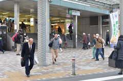 JR中央総武線・市川駅の様子。(2016-01-07,共用部,ENVIRONMENT,1F)