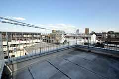屋上の様子。物干しもできます。(2011-03-10,共用部,OTHER,6F)