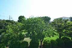 ベランダの目の前に広がる緑。(2014-06-19,共用部,OTHER,2F)
