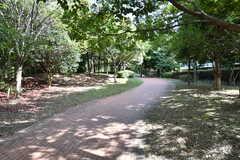 敷地の裏は緑化公園です。(2021-09-28,共用部,ENVIRONMENT,1F)