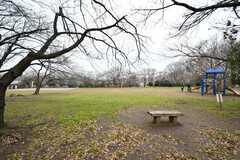 シェアハウスの向かいにある公園の様子。(2020-01-27,共用部,ENVIRONMENT,1F)