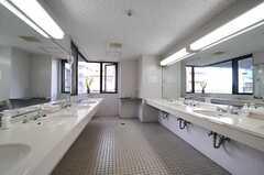 左右に並んだ洗面台の様子。各フロアで設備は同じです。(2013-05-02,共用部,WASHSTAND,2F)