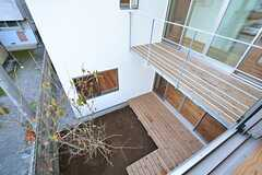 窓から中庭が望めます。(203号室)(2014-11-13,専有部,ROOM,2F)