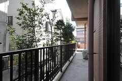 窓からベランダに出られます。(2013-11-28,共用部,LIVINGROOM,1F)