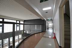 廊下の様子。廊下沿いに女性専用の水まわり設備とシアタールームがあります。(2013-11-28,共用部,OTHER,2F)