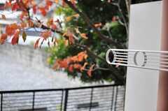 窓の外には物干し機具が設置されています。(105号室)(2013-11-28,専有部,ROOM,1F)
