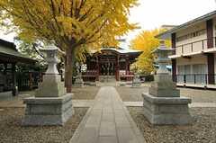 近所にある神社の様子。(2013-11-28,共用部,ENVIRONMENT,1F)