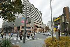JR常磐線・北小金駅の周辺の様子。(2013-11-28,共用部,ENVIRONMENT,1F)