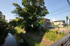 シェアハウスからJR常磐線・松戸駅へ向かう道の様子。(2012-06-14,共用部,ENVIRONMENT,1F)