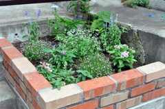 花壇もあります。(2010-07-01,共用部,OTHER,1F)