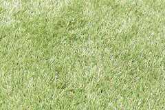 人工芝が敷かれています。(2017-04-10,共用部,OTHER,3F)