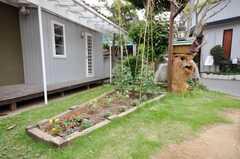 花壇には花が咲いている。(2009-06-26,共用部,LIVINGROOM,1F)