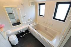 バスルームの様子。(2014-04-11,共用部,BATH,2F)