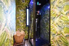 シャワールームの様子。(2017-01-30,共用部,BATH,1F)
