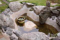 玄関前には小さな池があります。(2017-10-06,周辺環境,ENTRANCE,1F)