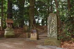 麻賀多神社には樹齢1400年の杉が生えています。(2018-05-29,共用部,ENVIRONMENT,1F)