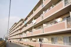 マンションの外観。1室がシェアハウス。(2009-11-10,共用部,OUTLOOK,1F)