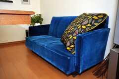 シェアハウスのラウンジの様子4。ベロアのソファ。(2009-11-10,共用部,LIVINGROOM,1F)