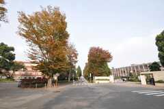 東京理科大学野田校舎が近い。(2009-11-10,共用部,ENVIRONMENT,1F)