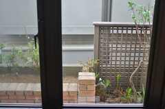窓から見た庭の様子。(2013-07-26,共用部,OTHER,1F)