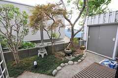 庭の様子。(101号室)(2013-07-26,専有部,ROOM,1F)
