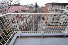 ベランダの様子。桜の枝がすぐ近くに。(4012号室)(2010-12-21,専有部,ROOM,4F)