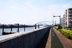 シェアハウスの目の前にある、旧江戸川の様子。(2013-07-09,共用部,ENVIRONMENT,1F)