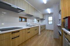 キッチンの様子。IHクッキングヒーターとシンクが2台ずつ設置されています。(2019-04-03,共用部,KITCHEN,1F)