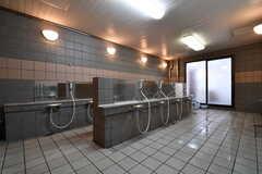大浴場の洗い場の様子2。(2017-04-05,共用部,BATH,1F)