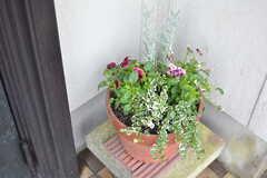 玄関前には鉢植えが。(2015-11-10,周辺環境,ENTRANCE,1F)