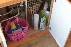洗面台下は入居者さんが自由に使えます。(2017-02-06,共用部,OTHER,2F)