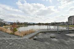 親水溜池の様子。周囲は公園になっています。(2017-02-06,共用部,ENVIRONMENT,1F)