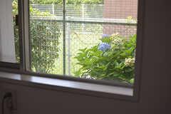 乾燥機の後ろの窓から見える紫陽花。(2016-08-02,共用部,LAUNDRY,1F)