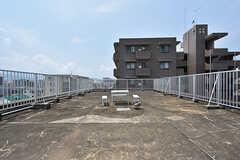 屋上の様子。(2016-08-02,専有部,ROOM,5F)