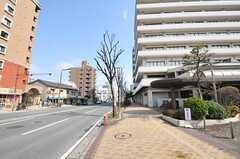 シェアハウスからJR鹿児島本線・吉塚駅へ向かう道の様子。(2011-03-26,共用部,ENVIRONMENT,1F)