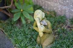 アプローチに隠れている石像。(2011-11-26,共用部,OTHER,1F)