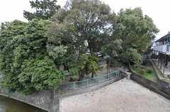 窓からは庭が見下ろせます。(207号室)(2012-03-16,専有部,ROOM,2F)